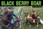 The Black Berry Boar