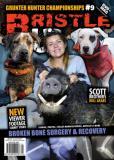 #20 - Bristle Up Magazine & DVD